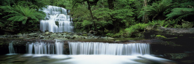 Liffey Falls, Tasmania, Australia Photographic Print by  Panoramic Images