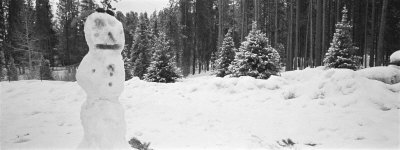 Snowman in a Forest, Winter Park, Colorado, USA Photographic Print by  Panoramic Images