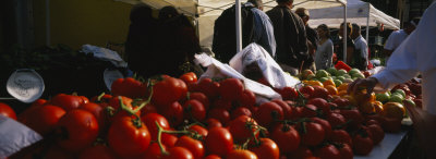Tomatoes, Chicago Farmer's Market, Chicago, Illinois, USA Photographic Print by  Panoramic Images