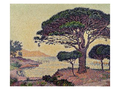 Umbrella Pines at Caroubiers, 1898 Premium Giclee Print by Paul Signac