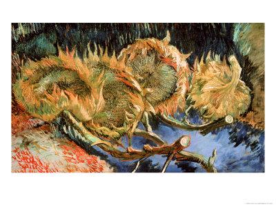 Four Cut Sunflowers, c.1887 Premium Giclee Print by Vincent van Gogh