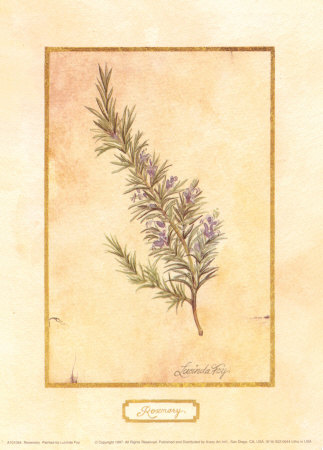 Rosemary Posters by Lucinda Foy