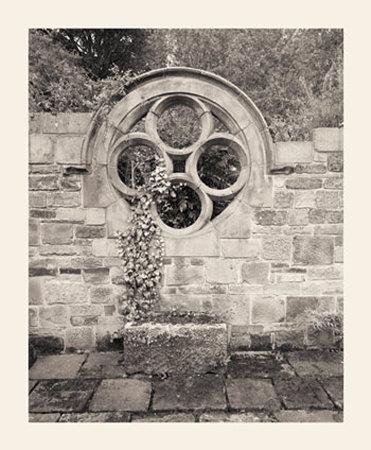 Secret Garden II Prints by Ned Witrogen