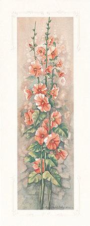 Hollyhocks II Prints by Peggy Thatch Sibley