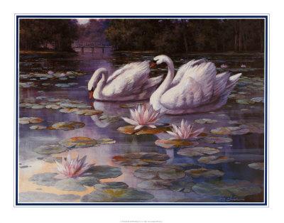 Swans and Bridge Prints by T. C. Chiu