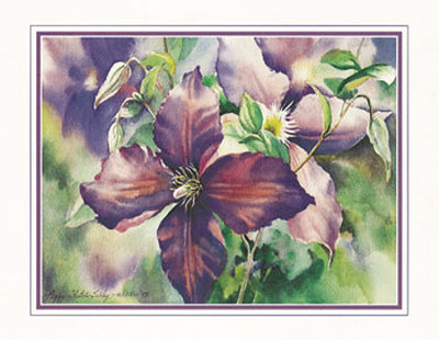 Purple Clematis Print by Peggy Thatch Sibley