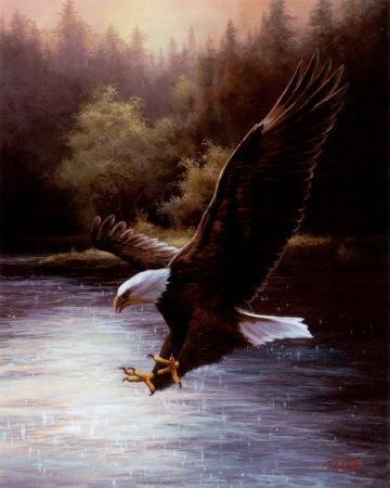 Eagle Prey Art by T. C. Chiu