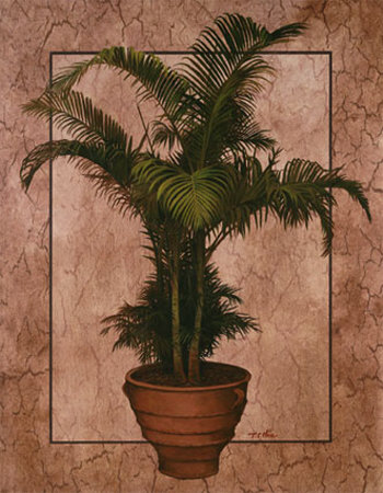 Potted Palm II Poster by T. C. Chiu