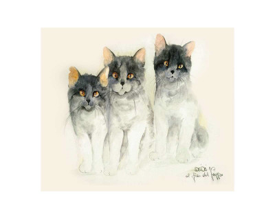 Katzen Print by Moser Dede