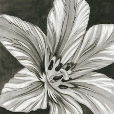 black and white flowers. Black and White Flower Art