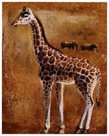 Girafe Prints by Olga Ilic