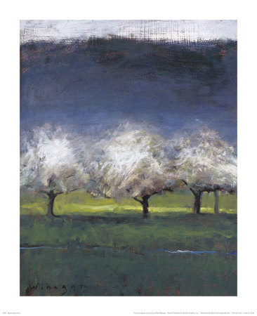 Blossoming Trees Prints by Seth Winegar