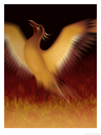 The Mythical Phoenix Rising from Ashes Reproduction d'art