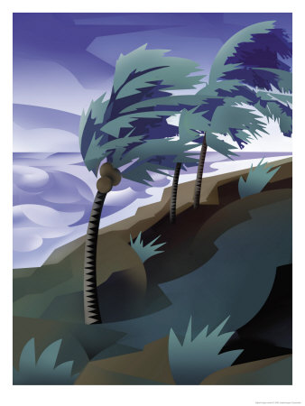 Palm Trees Bending in the Wind of a Hurricane Art Print