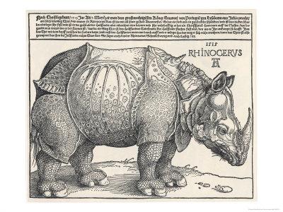 The Indian Rhinoceros is the Largest of the Asian Spiecies Premium Giclée-tryk af Albrecht Dürer