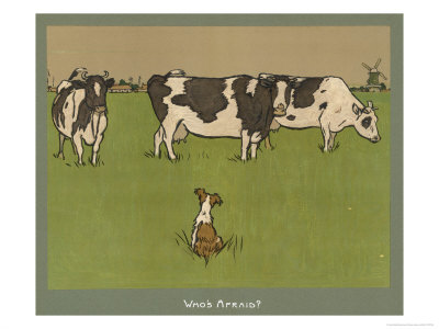 Who's Afraid, a Perky Little Dog Keeps an Eye on Three Cows Premium Giclee Print by Cecil Aldin