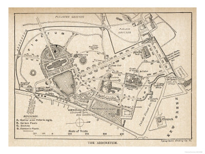 Plan of the Botanical Gardens reproduction procédé giclée