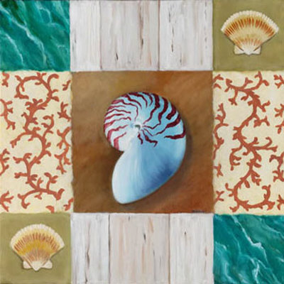 Shell Collage III Prints by David Marrocco