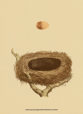 Antique Nest and Egg III Lámina