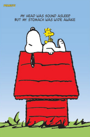 Snoopy Woodstock Posters
