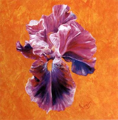 Un Amour d'Iris Prints by Anne Frémin Besombes