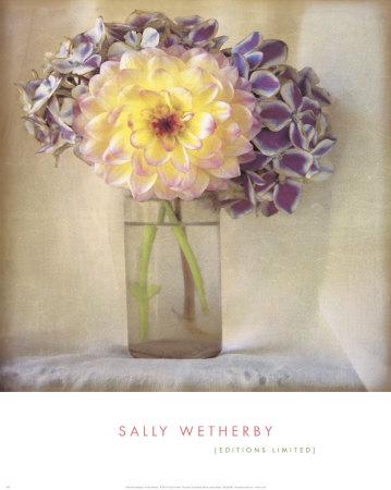 Dahlia with Hydrangeas I Posters by Sally Wetherby