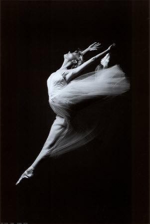 Uçan Zarafet (Grace in Motion) Sanatsal Reprodüksiyon
