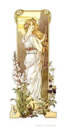 Fleurs des Montagne Giclee Print by Elisabeth Sonrel