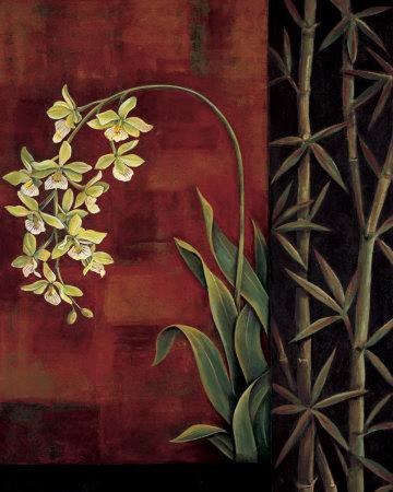 Green Orchid Prints by Jill Deveraux