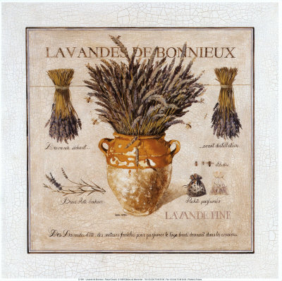 Lavande de Bonnieux Art by Pascal Cessou