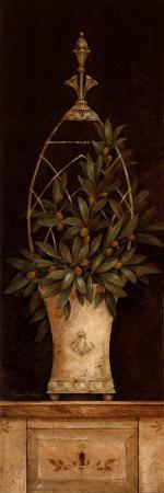 Olive Topiary II Prints by Pamela Gladding