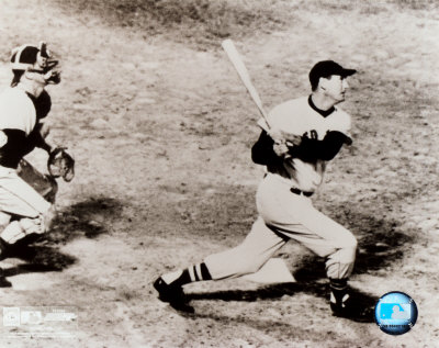 Ted Williams - Looking up Photo