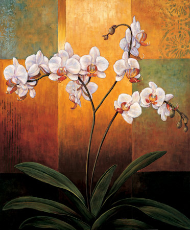 Orchids Posters by Jill Deveraux