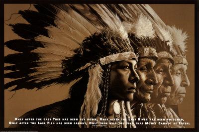 Native Wisdom plakat