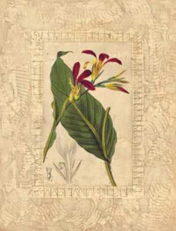 Estudio de Flores I Print by Javier Fuentes