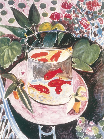 Poissons rouges Reproduction d'art