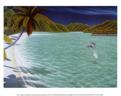 Trunk Bay Art by Dan Mackin