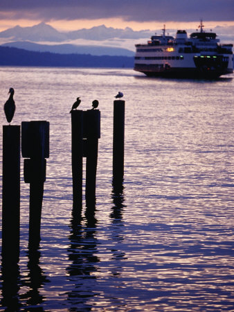 Wa State Ferry Coming in to Dock, Seattle, Washington, USA Photographic Print by Lawrence Worcester