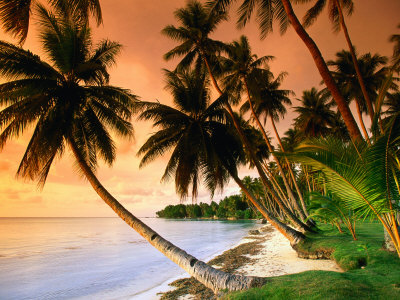Blue Lagoon Resort Beach, Weno Centre, Micronesia Photographic Print by John Elk III