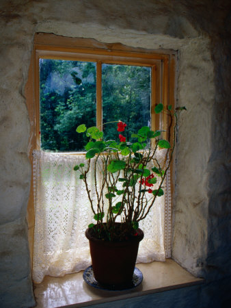 Cottage Window at Ulster Folk and Transport Museum, Down, Northern Ireland, United Kingdom Photographic Print