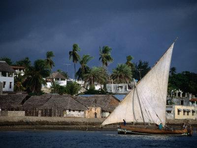 Traditional Dhow Sailing Past Town, Lamu, Coast, Kenya Photographic Print by Ariadne Van Zandbergen