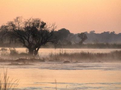 Early Morning Mist Rises off the Zambezi River, Zambezi National Park, Matabeleland North, Zimbabwe Photographic Print by Ariadne Van Zandbergen