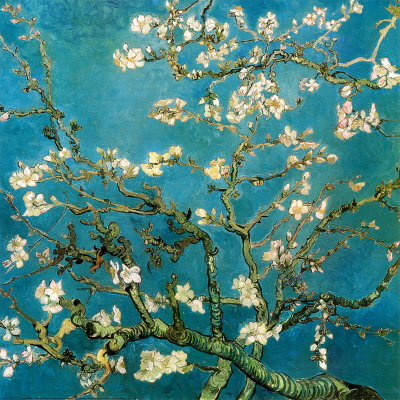 Branches d'Amandier en Fleurs, 1890 Reproduction d'art