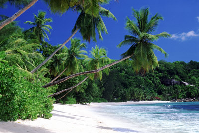 Mahe Island, Seychelles Poster