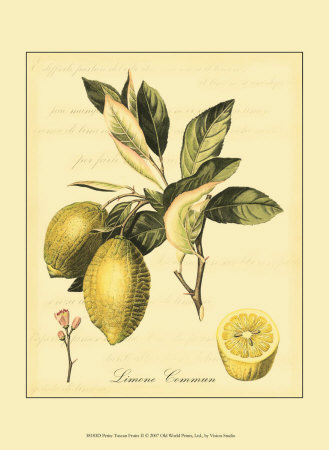 Petite Tuscan Fruits II Art Print