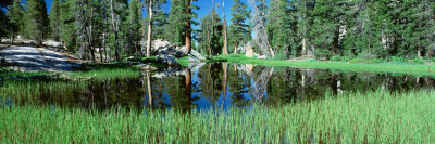 Tuolumne Meadows Pond, High Country, Yosemite National Park, California, USA Photographic Print by  Panoramic Images