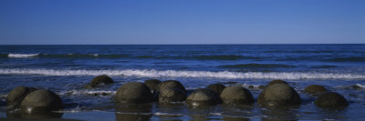 Boulders on the Beach, Moeraki Boulders, Gisborne, South Island, New Zealand Photographic Print by  Panoramic Images