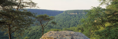 Milligans Overlook, Creek Falls State Park, Pikesville Fall, Tennessee, USA Photographic Print by  Panoramic Images