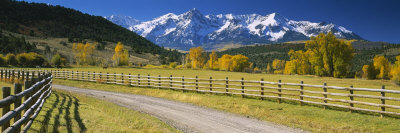 Fence along a Road, Sneffels Range, Colorado, USA Fotografisk tryk