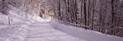 Bare Trees along a Snow Covered Road, Crystal Downs, Michigan, USA Photographic Print by  Panoramic Images